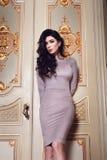 La mujer atractiva hermosa en la colección de moda del otoño del vestido elegante de maquillaje moreno largo del pelo de la prima Imagen de archivo libre de regalías
