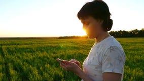 La mujer atractiva joven está utilizando un smartphone en un fondo de la puesta del sol en un césped verde en la cámara lenta almacen de metraje de vídeo
