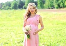 La mujer bastante embarazada con las manzanillas florece en día de verano Fotos de archivo