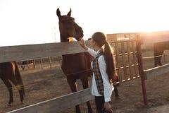 La mujer bastante joven toma cuidado de su caballo Imagen de archivo libre de regalías