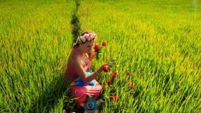 La mujer bonita rubia en guirnalda camina entre campo verde del arroz almacen de metraje de vídeo