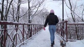 La mujer camina en el puente con su perro en el correo El pequeño terrier de Yorkshire corre cerca de dueño en nieve Cámara lenta almacen de video