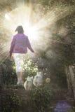 La mujer camina sus dos perros en cielo Foto de archivo libre de regalías