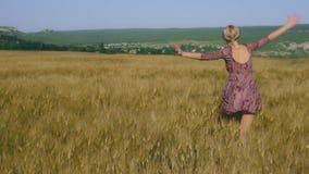 La mujer camina a través del campo de trigo, el venir del tiempo de cosecha metrajes