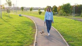 La mujer caucásica camina afuera con su pequeño perro en la puesta del sol en un parque verde almacen de video