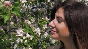 La mujer caucásica joven del primer huele las flores de los manzanos florecientes en jardín almacen de video