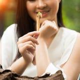La mujer come la hierba de la especia de la comida de Idia de la fusi?n foto de archivo