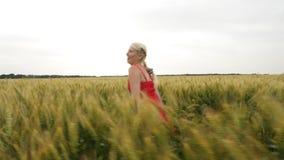 La mujer con el pelo rubio en un vestido rojo corre en el campo con trigo almacen de metraje de vídeo