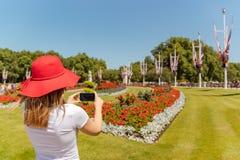 La mujer con el sombrero rojo toma una imagen de flores con el teléfono móvil foto de archivo libre de regalías
