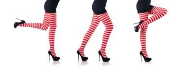 La mujer con las piernas y las medias largas fotos de archivo libres de regalías