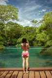 La mujer con los soportes del bikini, y toma la imagen de la cascada en bonito Imagenes de archivo