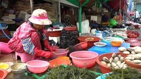 la mujer coreana 4K en el trabajo en mercado de los mariscos vende almejas frescas en Jagalchi Busán almacen de video