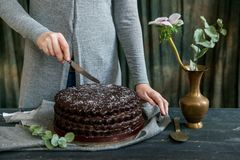 La mujer corta cierre de la torta de chocolate Tonos oscuros imagen de archivo