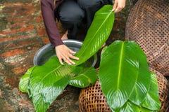 La mujer da la preparación hacer a Chung Cake, la comida lunar vietnamita de Tet del Año Nuevo Fotos de archivo libres de regalías