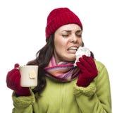 La mujer de estornudo de la raza mixta bebe té caliente mientras que nariz que sopla Fotografía de archivo libre de regalías