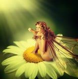 La mujer de hadas con las alas se sienta en la flor de la manzanilla Foto de archivo libre de regalías