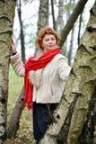 La mujer de los años medios con una bufanda del rojo cuesta entre abedules Foto de archivo