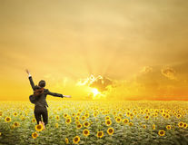 La mujer de negocios que salta en puesta del sol sobre los girasoles coloca Fotografía de archivo libre de regalías