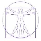 La mujer de Vitruvian proporcióna el cuerpo femenino stock de ilustración