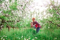 La mujer del bebé en primavera cultiva un huerto, los dientes de león florecientes Imágenes de archivo libres de regalías