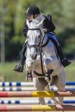 La mujer del caballo blanco salta   Fotografía de archivo