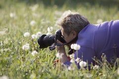La mujer del fotógrafo toma una foto de flores en un campo imagenes de archivo