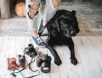 La mujer del inconformista se retrasa cerca de las cámaras digitales con un Labrador, concepto, forma de vida fotos de archivo libres de regalías