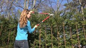 La mujer del jardinero cortó el seto del árbol de abeto con las podadoras rojas 4K almacen de video