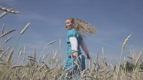 La mujer delgada joven feliz con un pelo justo largo en un vestido azul gira en el campo del trigo maduro en d?a soleado del vera almacen de metraje de vídeo