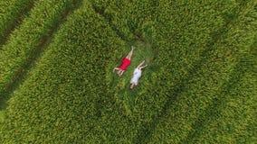 La mujer dos con el pelo rubio en un vestido rojo y azul está mintiendo en el campo con trigo almacen de metraje de vídeo