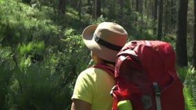 La mujer el viajero con una mochila roja y palillos turísticos sube por la montaña altai almacen de video