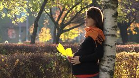 La mujer embarazada atractiva que juega con la hoja amarilla del otoño, vientre conmovedor, disfruta de la naturaleza hermosa almacen de video