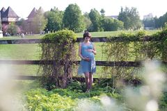 La mujer embarazada en el manzanar est? llevando a cabo la panza y la rama floreciente de la manzana imagen de archivo