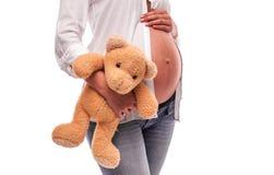 La mujer embarazada está sosteniendo un oso cerca del vientre imagen de archivo libre de regalías