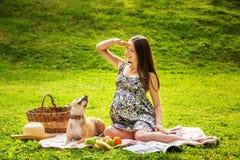 La mujer embarazada hermosa Fotografía de archivo