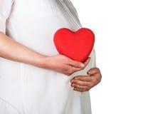 La mujer embarazada lleva a cabo el corazón rojo disponible aislado en blanco Fotos de archivo libres de regalías