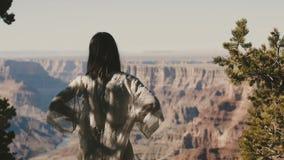La mujer emocionada feliz joven de la visión trasera se coloca en el punto de observación del desierto que sorprende que mira el  almacen de video