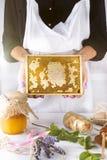 La mujer en el delantal blanco sostiene el panal en manos Fotos de archivo libres de regalías