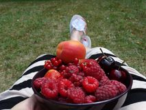La mujer en un vestido rayado que se sienta en el jardín y come las frutas Fotos de archivo