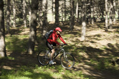 La mujer en una bicicleta de la montaña Imagenes de archivo