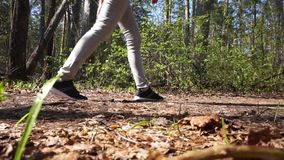 La mujer en zapatos del deporte pasa a través del bosque en el tiempo del día en la primavera almacen de metraje de vídeo
