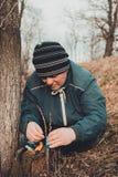La mujer envuelve un ?rbol del injerto con una cinta aislante en el jard?n para detener la humedad en ella en primer foto de archivo