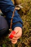 La mujer envuelve un ?rbol del injerto con una cinta aislante en el jard?n para detener la humedad en ella en primer fotografía de archivo libre de regalías