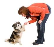 La mujer es entrenamiento del perro Foto de archivo libre de regalías