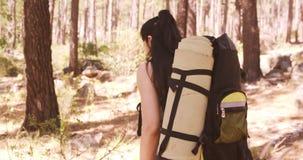 La mujer está caminando en el bosque metrajes