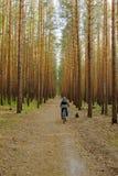 La mujer está completando un ciclo en bosque del pino Foto de archivo libre de regalías