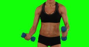 La mujer estupenda del ajuste que levanta pesas de gimnasia en negro se divierte el sujetador y pantalones cortos almacen de video