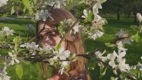 La mujer feliz joven que camina en un manzanar en la primavera florece blanco Retrato de una mujer hermosa metrajes
