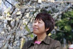 La mujer goza de la flor de los ciruelos Fotos de archivo