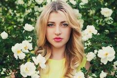 La mujer hermosa con el pelo rizado largo huele las rosas blancas al aire libre, retrato del primer de la cara sensual de la much Fotografía de archivo libre de regalías